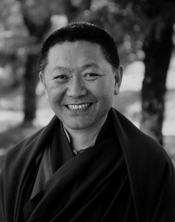 Ringu Tulku