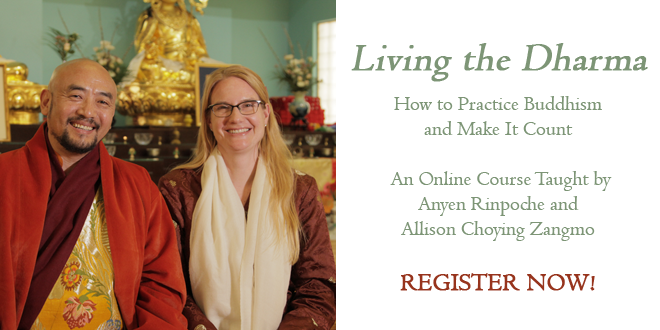 Living the Dharma online course