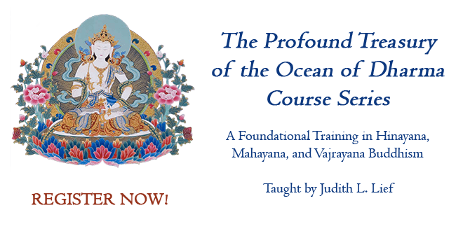 The Profound Treasury of the Ocean of Dharma Course Series
