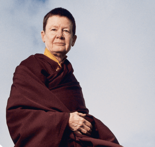 Pema Chodron on Remaining Like a Log