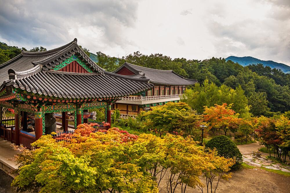 Korean Zen: A Reader's Guide