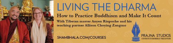 Living the Dharma course
