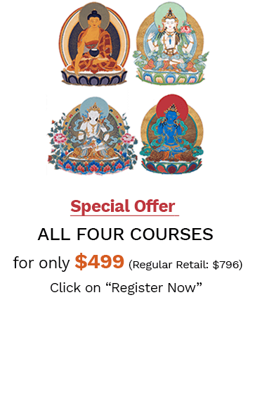 Profound Treasury of the Ocean of Dharma Course Series