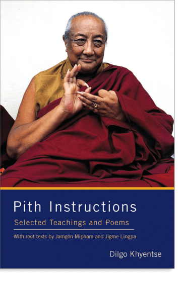Pith Instructions