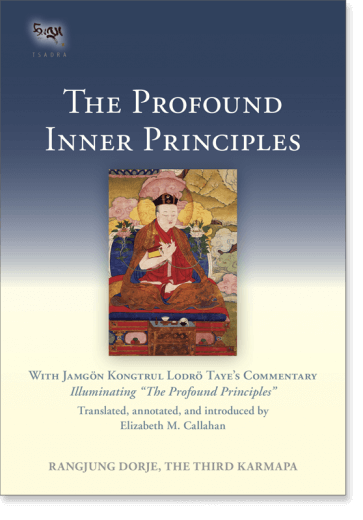 The Profound Inner Principles