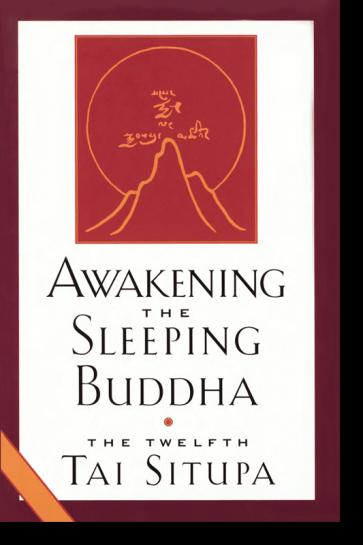 Awakening the Sleeping Buddha