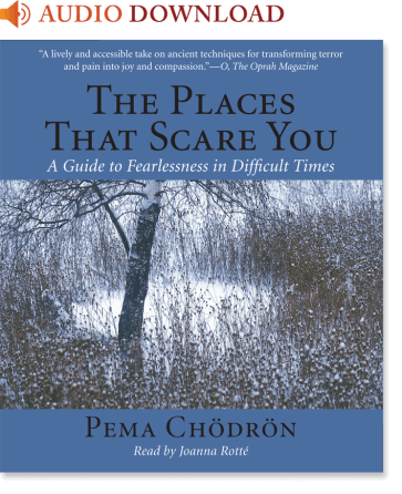 the places that scare you by pema chodron pdf