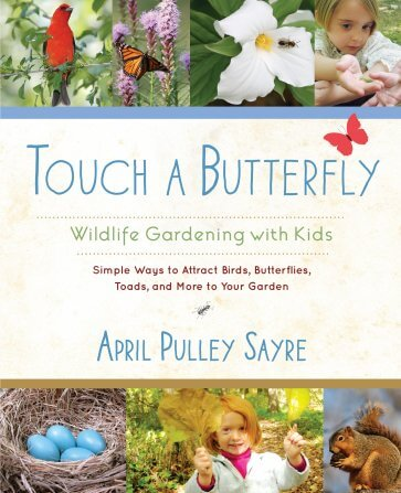 Touch a Butterfly
