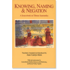 Knowing, Naming, and Negation