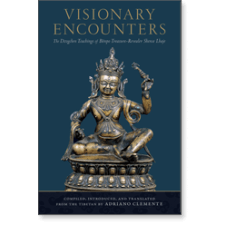 Visionary Encounters