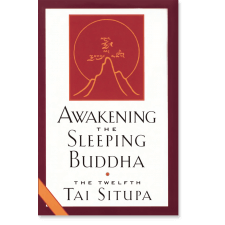 Awakening the Sleeping Buddha