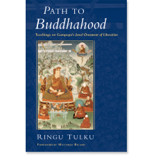 Path to Buddhahood