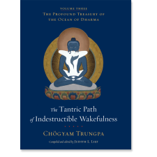 The Tantric Path of Indestructible Wakefulness (volume 3)