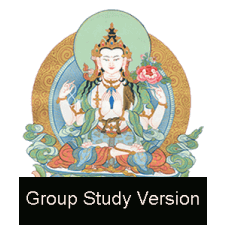 The Bodhisattva Path of Wisdom and Compassion (Group Study Version)