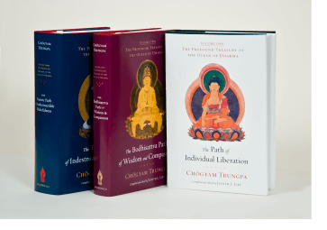 The Profound Treasury of the Ocean of Dharma