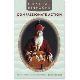 Words of Advice from Chatral Rinpoche