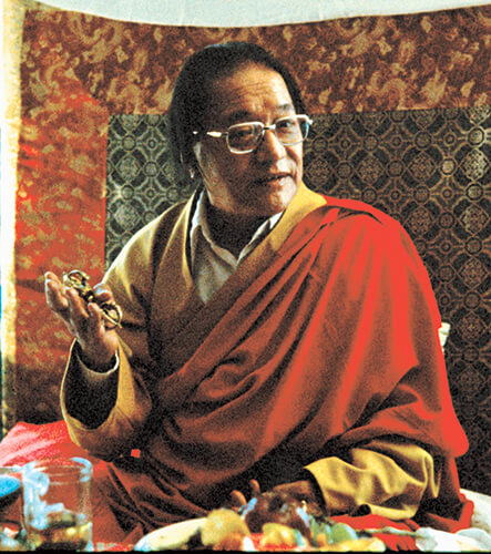 Reader's Guide: Dudjom Rinpoche, Jigdral Yeshe Dorje