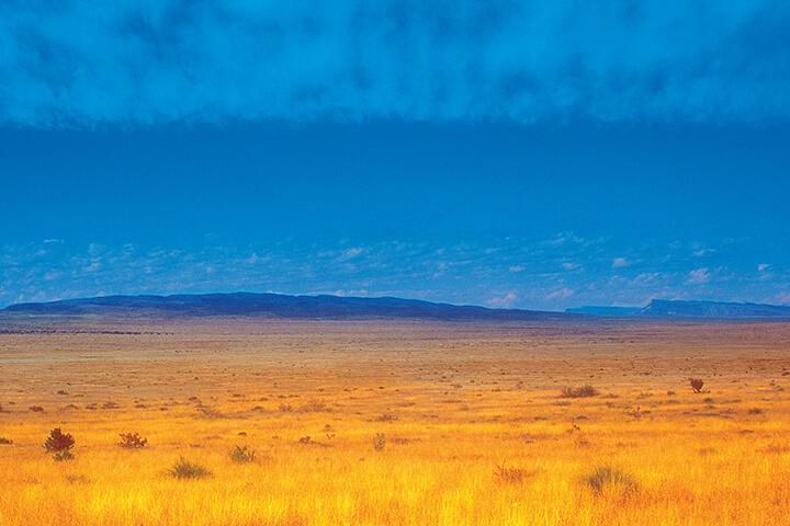 The Desert Knows | An Excerpt from Desert