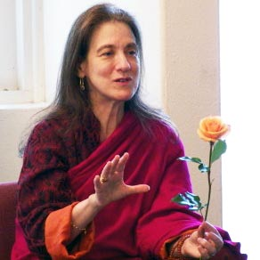 The Sunlit Sky: Longchenpa's Open Secret with Anne C. Klein