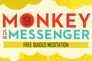 The Monkey is the Messenger Meditation