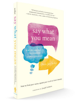 Say What You Mean: Exploring Mindful Communication with Oren Jay Sofer