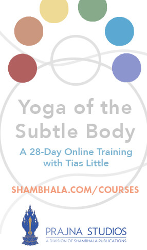 Yoga of the Subtle Body course